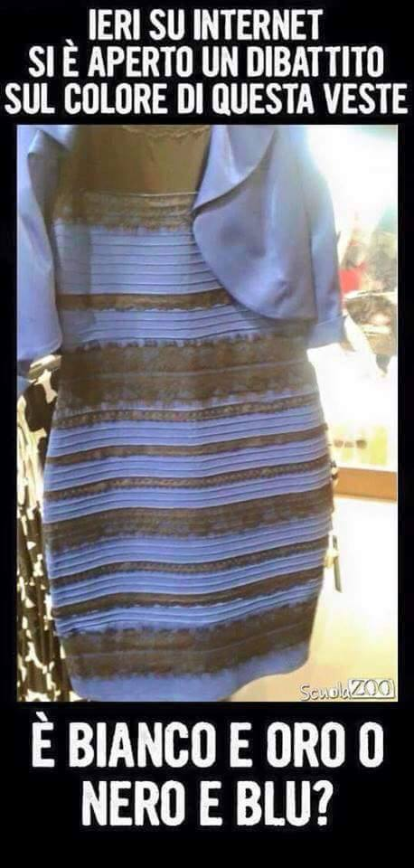 #TheDress meme (9)