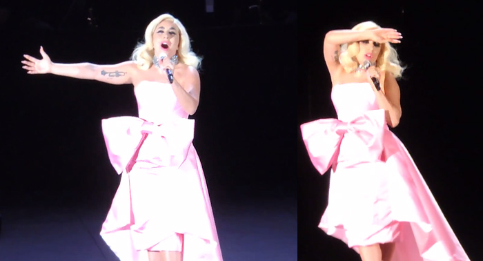 lady gaga la vie en rose dress