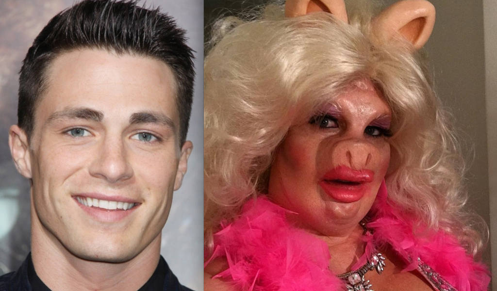colton-haynes-miss-piggy