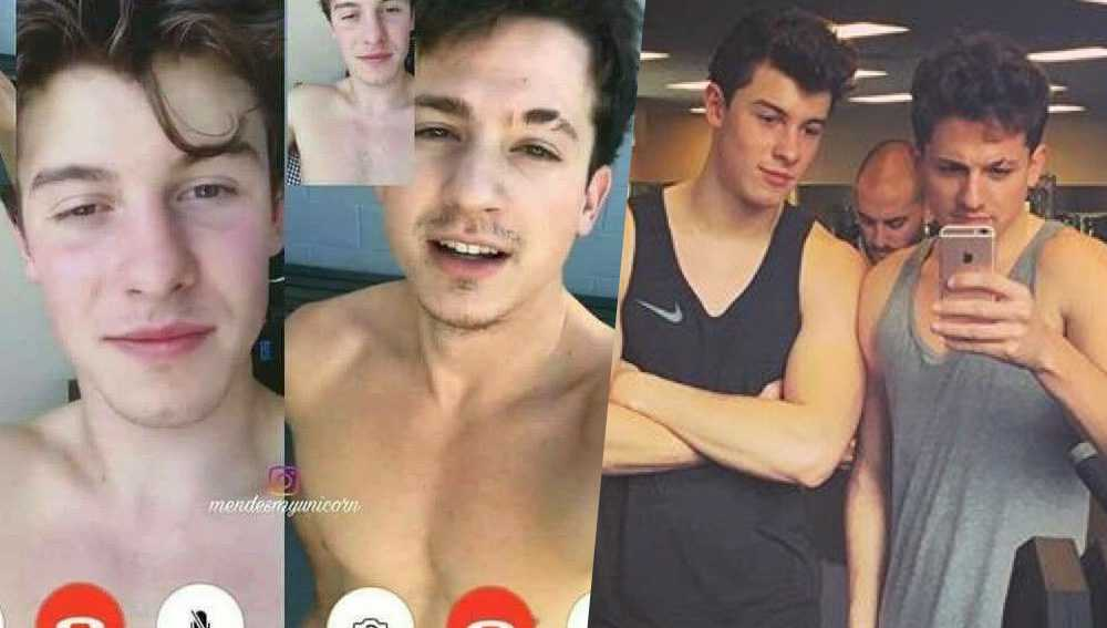 shawn mendes charlie puth gay